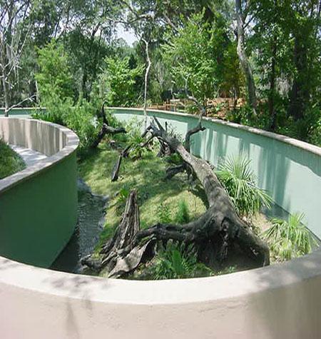 Outdoor non-venmous snake habitat.